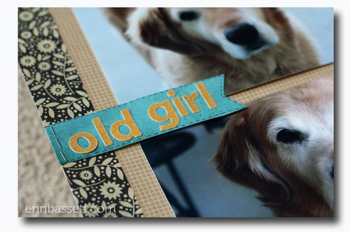 BLOG Erin Bassett - SS January- Old Girl